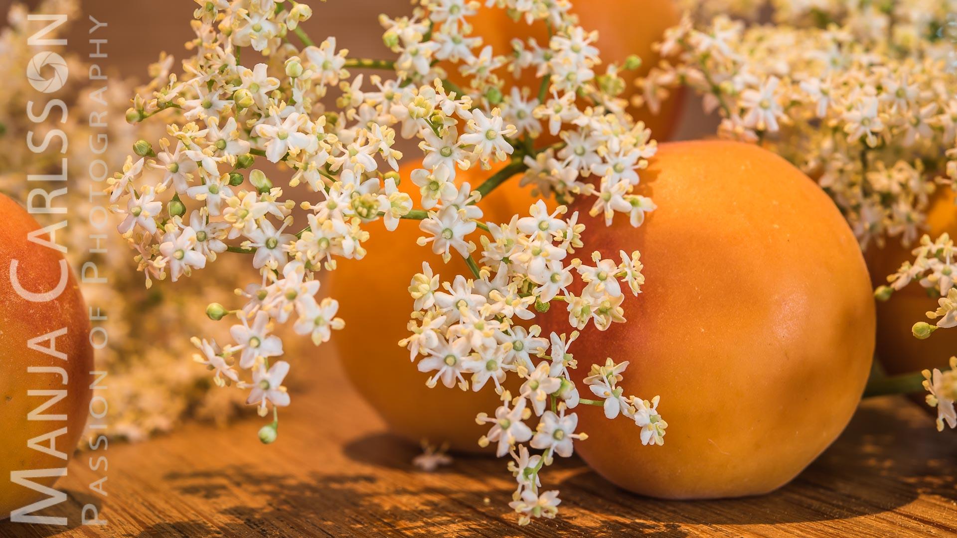 Aprikosen und Holunderblueten